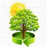 пермакультура - гарант успешного урожая